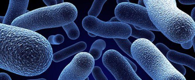 Ce este dezinfectia